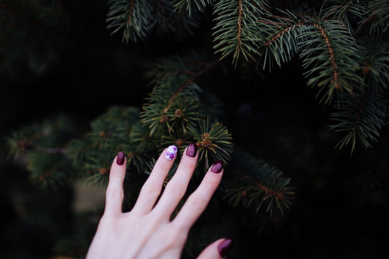 hands nails