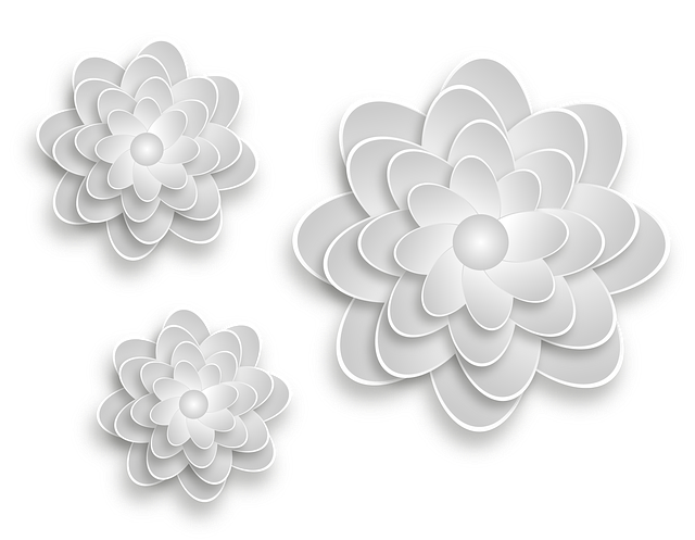 three white flowers